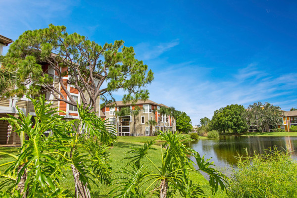 Palm Cove Apartments Landscaping